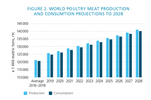 Infographic over world poultry meat production and cunsumption for 2018-2019